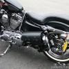 Harley Davidson Sportster Left Leather Saddlebag + 1L LowBrow Bottle